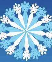Sneeuwvlok decoratie karton 60 cm