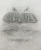 Snor charly grijs