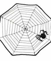 Spinnenweb 40 x 40 cm