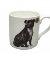 Staffordshire bull terrier mok