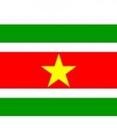 Surinaamse vlag mini 60 x 90 cm