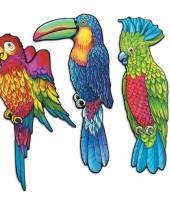 Tropische decoratie vogels 3 stuks