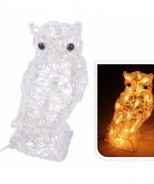 Uil met verlichting op led lampjes 30 cm