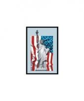 Usa vlag decoratie spiegel