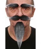 Verkleedset grijs snor sik en wenkbrauwen
