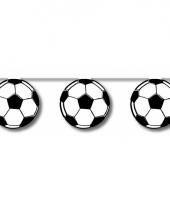 Vlaggenlijn voetbal 5 meter