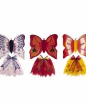 Vlinderpak voor kids
