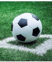 Voetbal thema servetten 20 stuks
