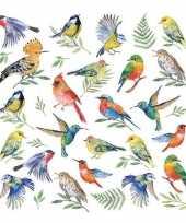 Voorjaars servetten vogels
