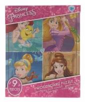 Weggevertjes puzzeltjes van disney princess 9x