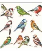 Wegwerpservetten vogeltjes 3 laags 20 stuks