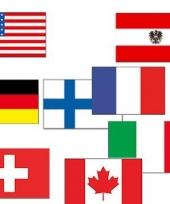 Wintersport versiering vlaggen