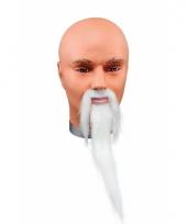 Witte lange baard met snor