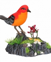 Wonderbird model b