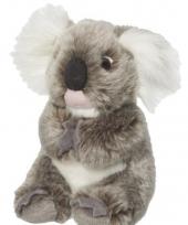 Zachte koala knuffel 18 cm