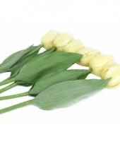 Zes cremekleurige namaak tulpen