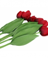 Zes rode namaak tulpen