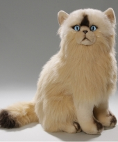 Zittende persische katten knuffel