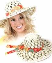 Zomerse stro hoed voor dames
