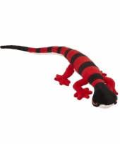 Zwart met rode gekko knuffel 62 cm