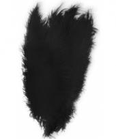 Zwarte grote sier veertjes 50 cm
