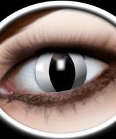Zwarte katten oog kleurlenzen