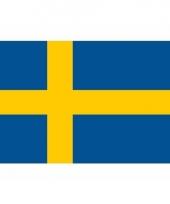 Zweedse vlag mini 60 x 90 cm